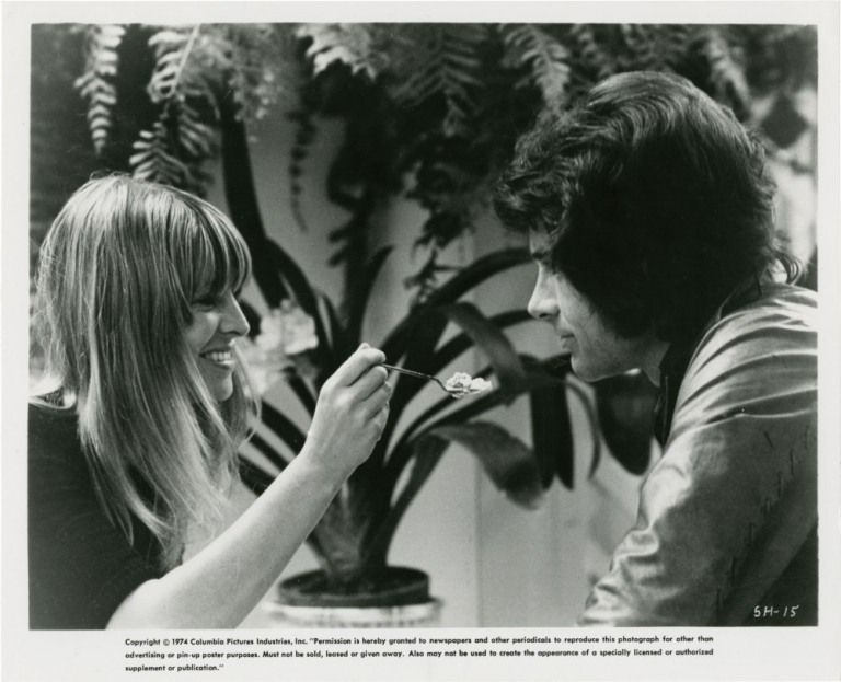 Shampoo. Hal Ashby, Warren Beatty Robert Towne, Julie Christie Warren Beatty, Lee Grant, Goldie Hawn, director, screenwriters, starring.
