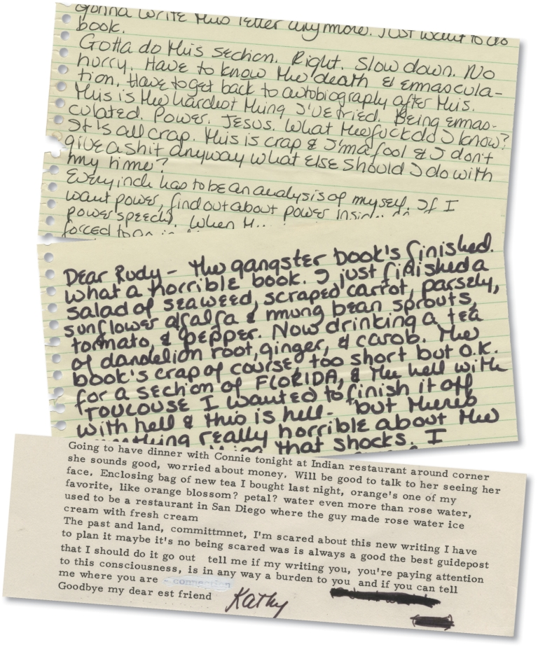 Archive of seven letters from Kathy Acker to Rudolph Wurlitzer, 1976. Kathy Acker, Rudolph Wurlitzer.