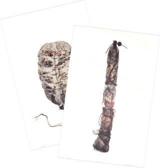 Salami (Suite of 15 Prints, Signed and Numbered). Hans Gissinger.