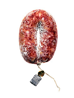 Salami #14 (Signed Limited Edition Print). Hans Gissinger