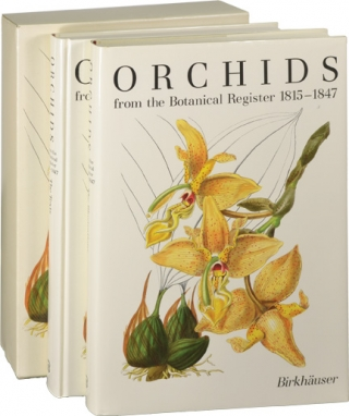 Orchids from the Botanical Register 1815 - 1847 (First Edition, two volumes). Samuel Sprunger,...