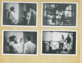 "Research archive for ""The Theory and Practice of the Cine-Roman"""