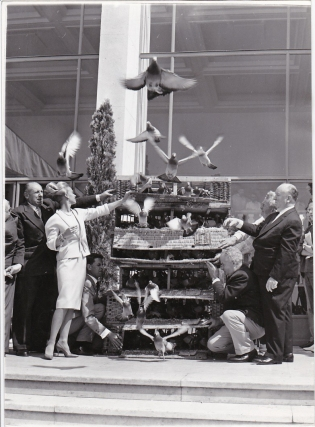 The Birds (Original photograph from the set of the 1963 film). Alfred Hitchcock, Daphne Du...