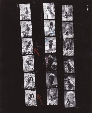 Walk on the Wild Side (Collection of four original contact sheets from the 1962 film). Edward...