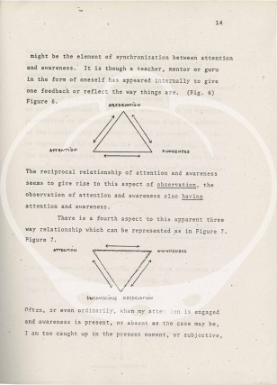 Archive of publications from the Center for Music Experiment, 1974-1979